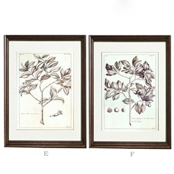 Picture of Wall Art (set of 2)